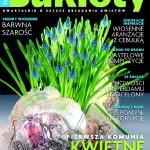 Kwartalnik o sztuce układania kwiatów - BUKIETY - 1/2008.