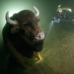 Ewa z Żubrem 10 lipca 2009 w Hańczy na głębokości 26 metrów z trzeciego parkingu. Potem Żubr zniknął :-(.